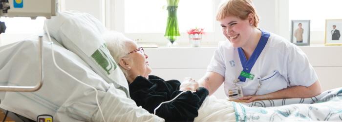 palliativa vårdens fyra hörnstenar